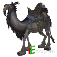 Grey Riding Camel