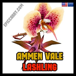 Ammen Vale Lashling