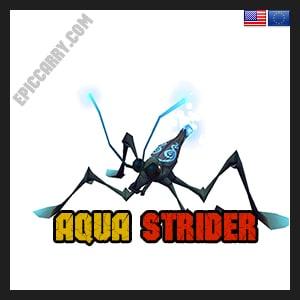 Aqua strider