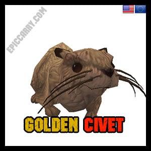 Golden Civet