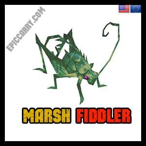 Marsh Fiddler