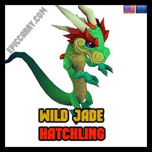 Wild Jade Hatchling