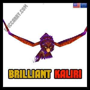 Brilliant Kaliri