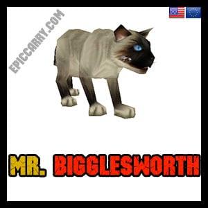 Mr. Bigglesworth