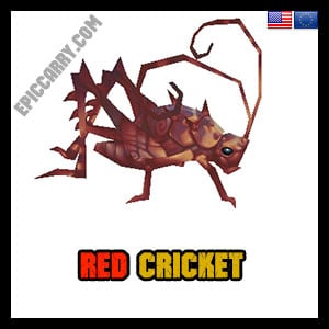 Red Cricket